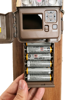ストライクプロ乾電池