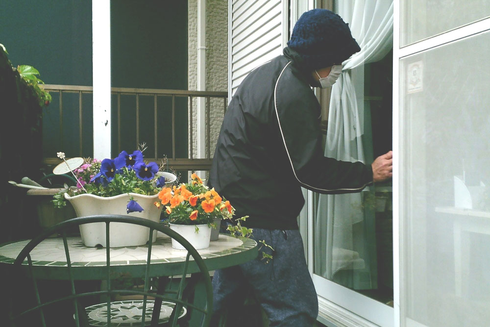 STR-MiNi-ご自宅・お庭の監視